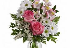 hurtownia kwiatowa - Kwiaciarnia Róża zdjęcie 6