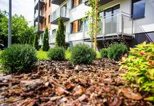 apartamenty - Tree Development Group Sp... zdjęcie 7