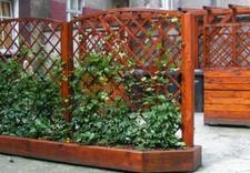 ogrodnicy - Zakład Kształtowania i Pi... zdjęcie 10