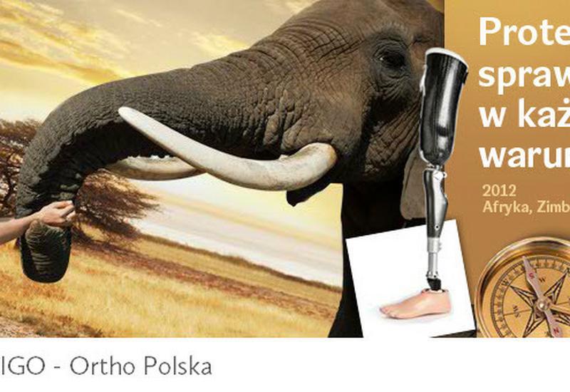 zakład ortopedyczny - Vigo-ortho Polska sp z o.... zdjęcie 2