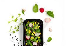 catering dietetyczny - Fit-Catering zdjęcie 1