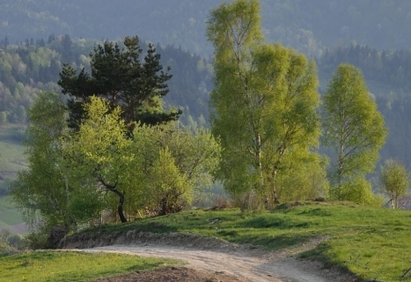 krajobraz - Terra - analizy, doradztw... zdjęcie 4