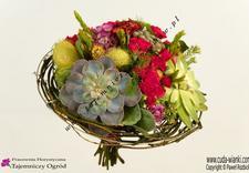 florystyka świąteczna - Pracownia Florystyczna Ta... zdjęcie 6