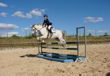 szkółka jeździecka - Ośrodek Jeździecki Faruk zdjęcie 12