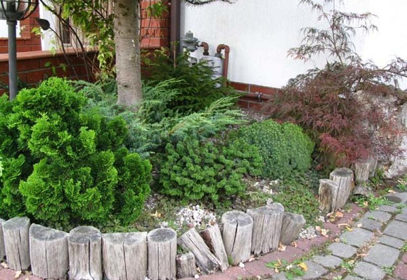 ogrody mazowieckie - AWR Ogrody Niebanalne - o... zdjęcie 6