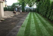 projektowanie ogrodów - PLATAN URZĄDZANIE I UTRZY... zdjęcie 2