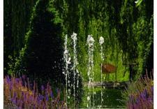 kaskady ogrodowe - Zielony Krajobraz - syste... zdjęcie 5