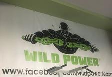 kickboxing dla dzieci - WILD POWER GYM Sp. z o.o. zdjęcie 1