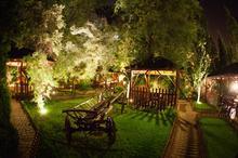 Przepiękny ogród w centrum miasta