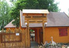 ścieżka edukacyjna - Park Dinozaurów. Leśna śc... zdjęcie 1