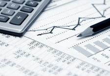 prowadzenie ksiąg rachunkowych - Biuro Rachunkowe Basia Ba... zdjęcie 6