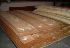 okleina modyfikowana - ZAGŁOBA 2 Drewno Egzotycz... zdjęcie 3