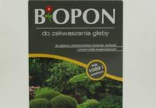 zielono.net, ogród