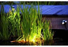 stawy - Zielony Krajobraz - syste... zdjęcie 9