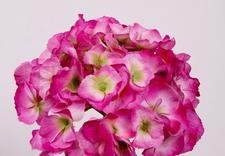 kwiaty sztuczne hurt - Akces I. J. Ostrowscy Sp.... zdjęcie 14