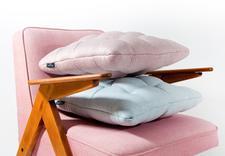 przedmioty dekoracyjne - MANU design Renowacja meb... zdjęcie 3