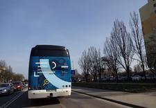 przewóz osób - Firma Samochodowa Dobruck... zdjęcie 18