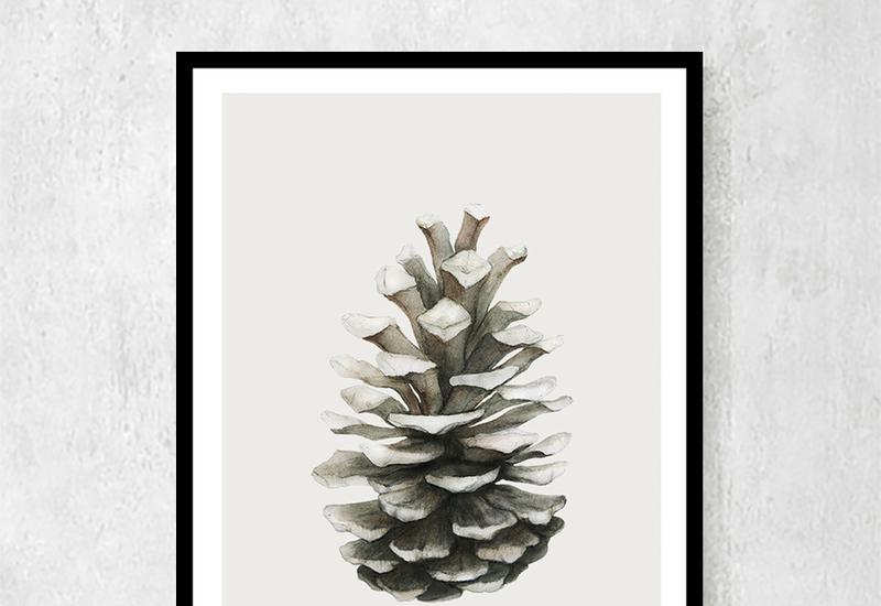 plakaty botaniczne - Ceci Bloom Anna Pleń zdjęcie 1