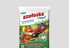 akcesoria do storczyków - Sklep Ogrodniczy Rolnik J... zdjęcie 6