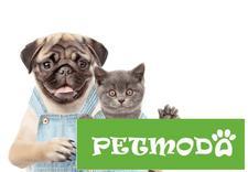 akcesoria dla zwierząt - Internetowy Sklep Zoologi... zdjęcie 1