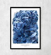 """Plakat botaniczny """"Hortensje błękitne"""" A4"""