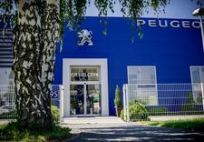 dealer peugeot - Ciesielczyk - dealer nowy... zdjęcie 4