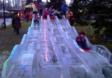 dekoracje - Ice Evolution. Rzeźby Lod... zdjęcie 12