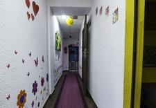 opieka nad dzieckiem - Niepubliczny Żłobek KLEKO... zdjęcie 4
