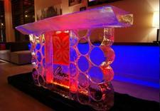 logo - Ice Evolution. Rzeźby Lod... zdjęcie 9