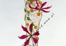 wesele organizacja - Pracownia Florystyczna Ta... zdjęcie 28