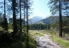 pensjonat w górach - Willa Litka- wypoczynek i... zdjęcie 7