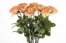 Róża pomarańczowa 88cm