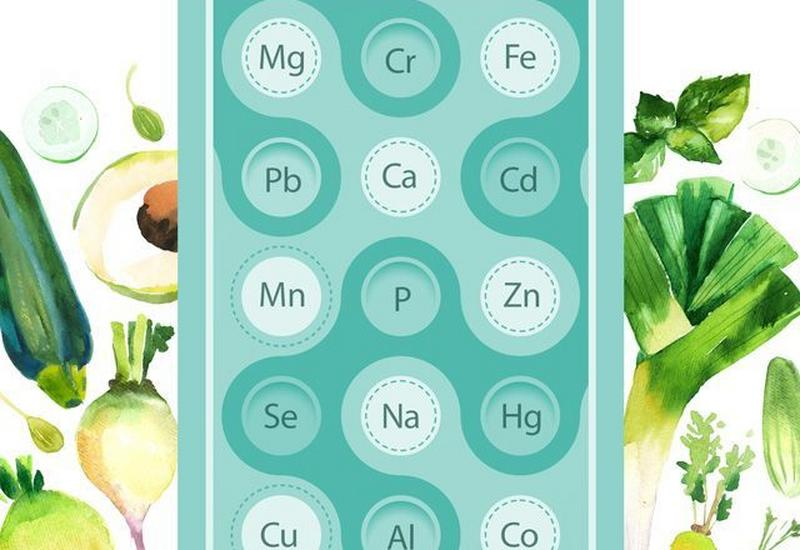 przygotowanie diety - Biomol-Med Sp. z o.o. zdjęcie 1