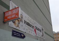 strzyżenie psów - PSUBRATEK & SEJUTEK zdjęcie 2