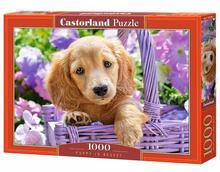 Puzzle Castor 1000 - Szczeniak w koszyku