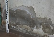 usuwanie pleśni - TECHNOBUD - ekspertyzy my... zdjęcie 12