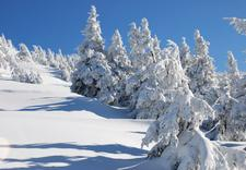 test wiązań - Sport Osicki. Narty, snow... zdjęcie 2