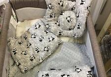 poduszki antywstrząsowe - Pulp Bamboo zdjęcie 13