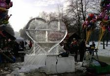 zamrożone w lodzie - Ice Evolution. Rzeźby Lod... zdjęcie 13