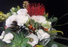 doniczki - Kwiaciarnia Magia Kwiatów... zdjęcie 9