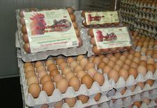 giełda spożywcza katowice - Śląski Rynek Hurtowy Obro... zdjęcie 12