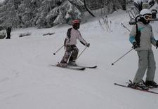 snowboard - Stacja Narciarska Ski Lub... zdjęcie 4
