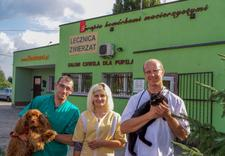 diety dla psów - CENTRUM ZDROWIA I URODY Z... zdjęcie 13